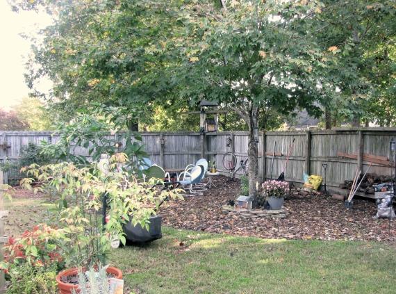 Fall Garden 2015